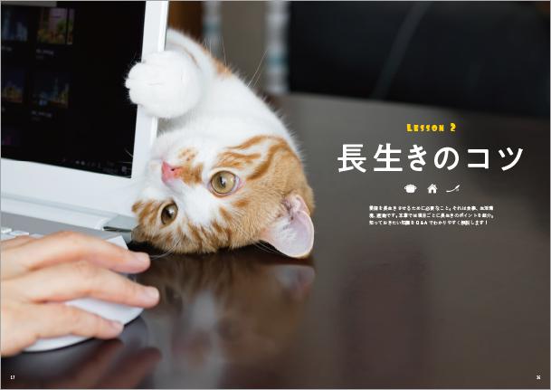 幸せ猫の長生きBOOK